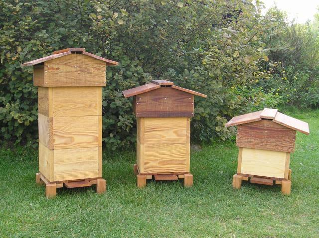 Как и когда обрабатывать пчел бипином фото - 26183