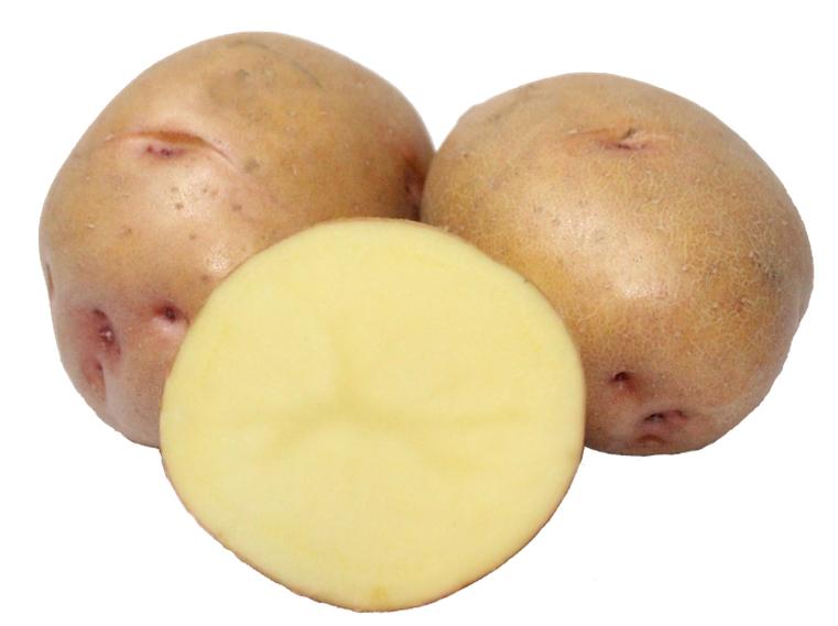 Картофель сорт Княгиня