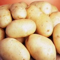 30403 Картофель сорт Саванна (Голландия)