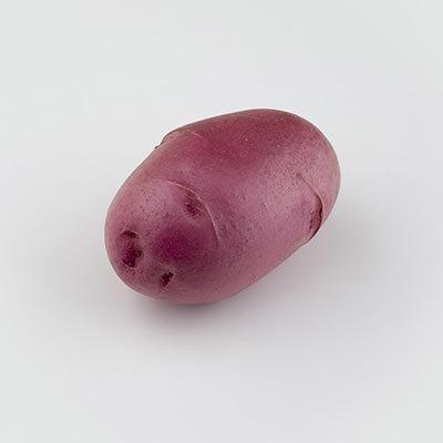 30431 Картофель сорт Фламенко