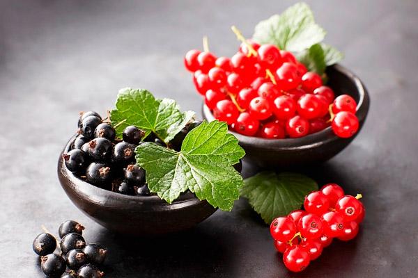 Советы по выращиванию смородины фото - 29344
