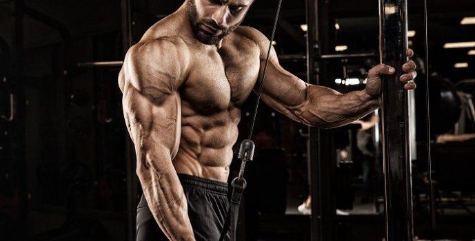 Как купить гормоны для роста мышц?