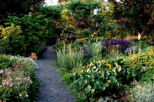 Дикий сад: не лишайте себя удовольствия фото - 34065