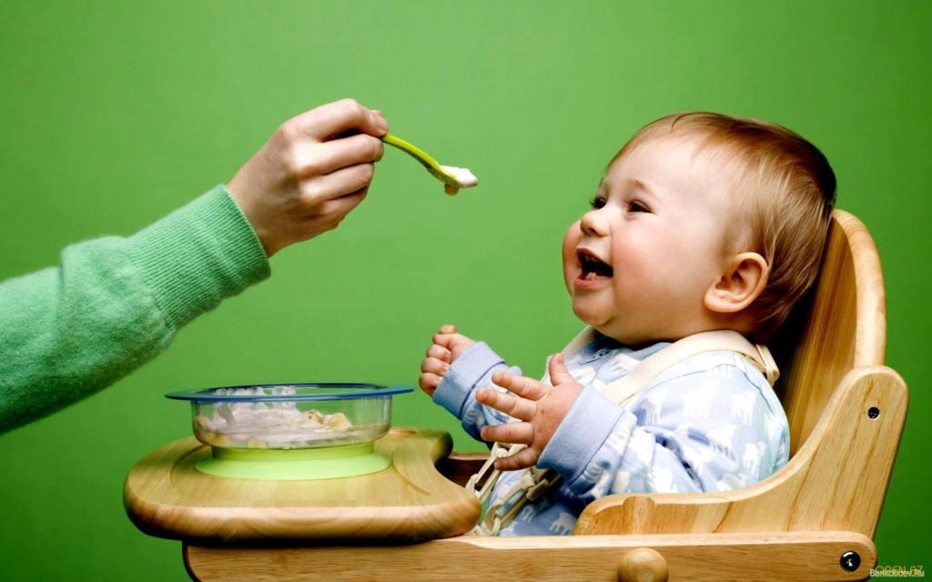 31766 Как давать творог детям до года