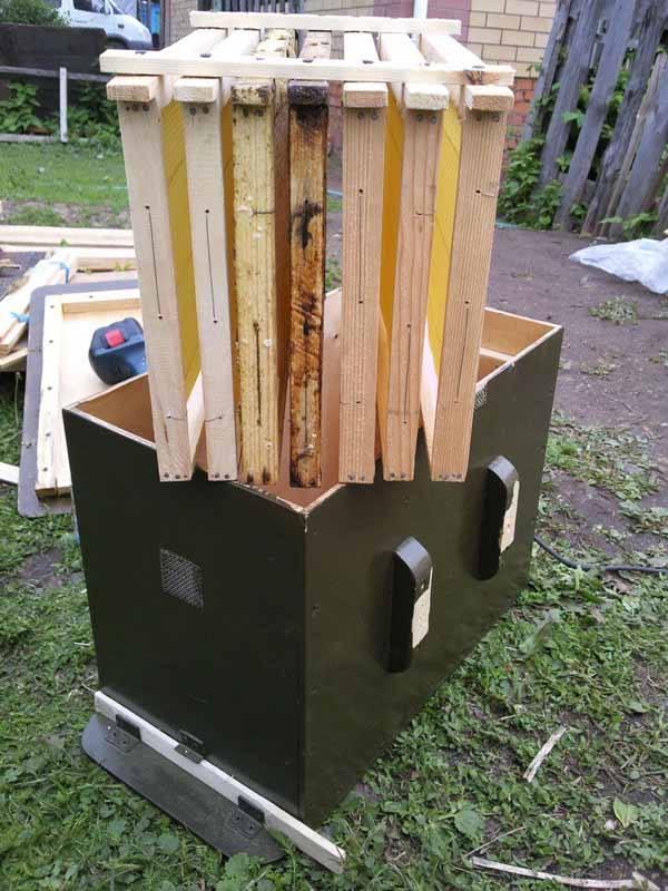 Как сделать ловушку для пчел и заманить их туда