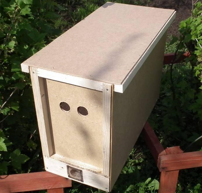 31959 Как сделать ловушку для пчел и заманить их туда