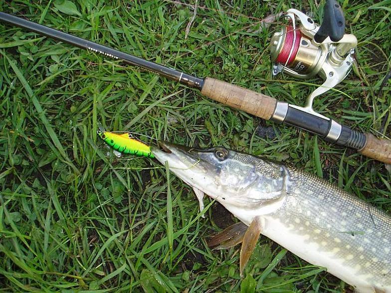 32214 Инструменты для ловли хищной рыбы – спиннинги и воблеры