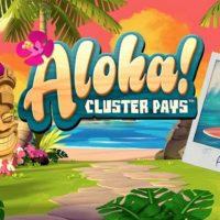 32622 Обзор игрового автомата «Гавайи отпуск» в Casino X