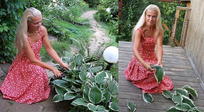 33348 Как сделать за 5 минут красивую растительную скатерть для дачного праздника