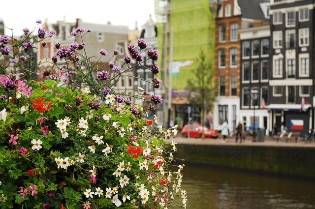 Несколько важных советов для приобретения конопли в Амстердаме
