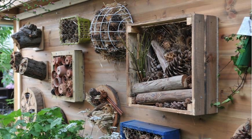 забор, домик для насекомых
