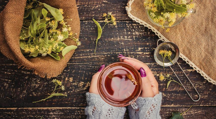 Липа: полезные свойства и рецепты