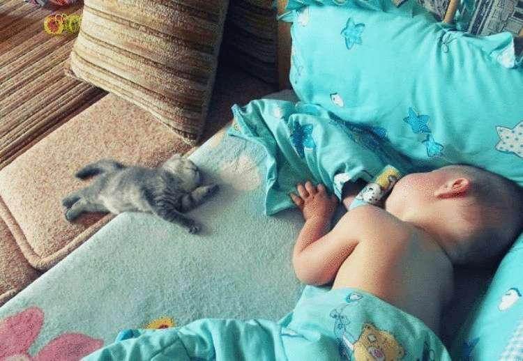 34994 Дети и домашние питомцы — лучшие друзья