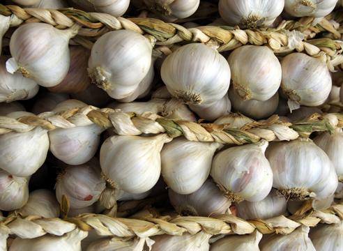 36061 Как сохранить урожай чеснока и лука: лучшие народные способы, проверенные временем