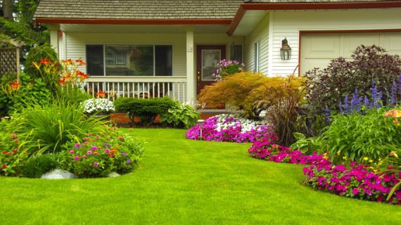 36400 Садовый конструктор: собери свой цветник перед домом
