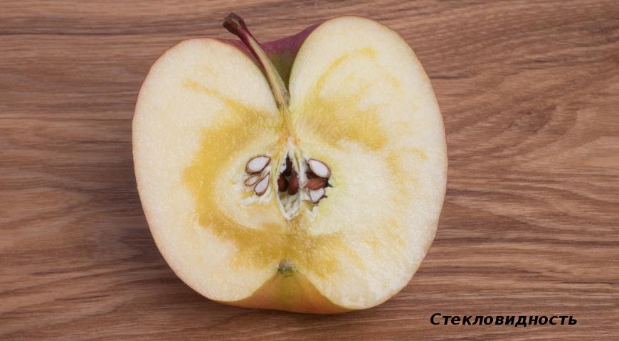 Стекловидность яблок