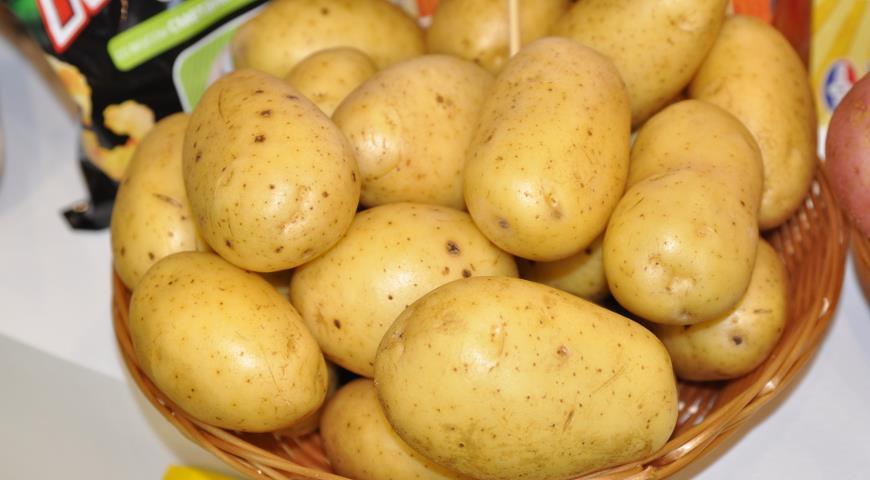 37091 Картофель: как выбрать для еды хорошую картошку