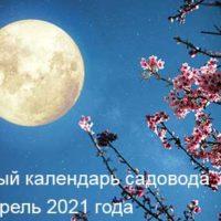 37886 Лунный календарь садовода и огородника на апрель 2021 года