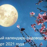 37528 Лунный календарь садовода и огородника на март 2021 года