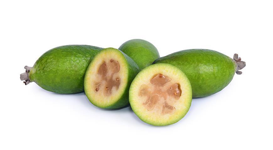Как вырастить апельсин, грейфрут, лимон, финик, киви и даже авокадо из косточки