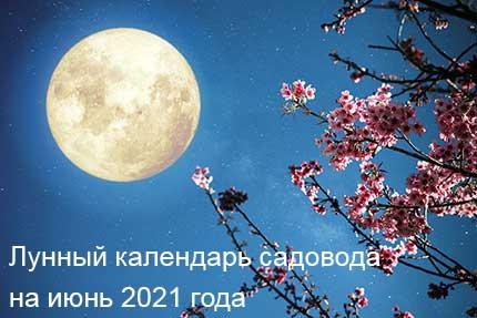 39467 Лунный календарь садовода и огородника на июнь 2021 года