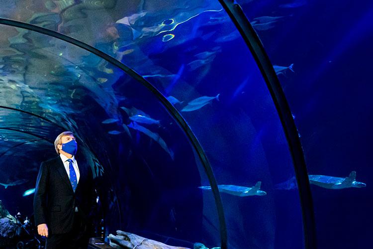 40555 После скандала с отпуском: король Виллем-Александр проводит время в зоопарке, королева Максима - на сцене