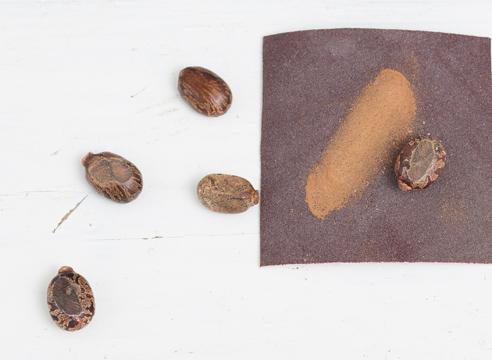 Как прорастить невсхожие и непослушные семена: 6 проверенных способов