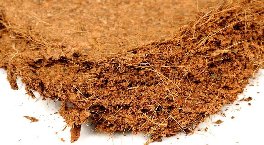 Как сделать покупной универсальный грунт пригодным для посева рассады: почвоулучшители и добавки для грунта