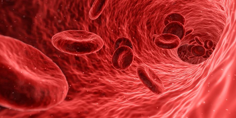 42509 Названы группы крови с сильным и слабым иммунитетом к коронавирусу-19