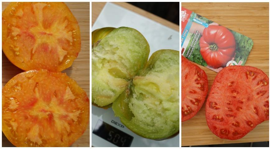 сибирские томаты; Загадка природы, Малахитовая шкатулка, Сибирский тренд