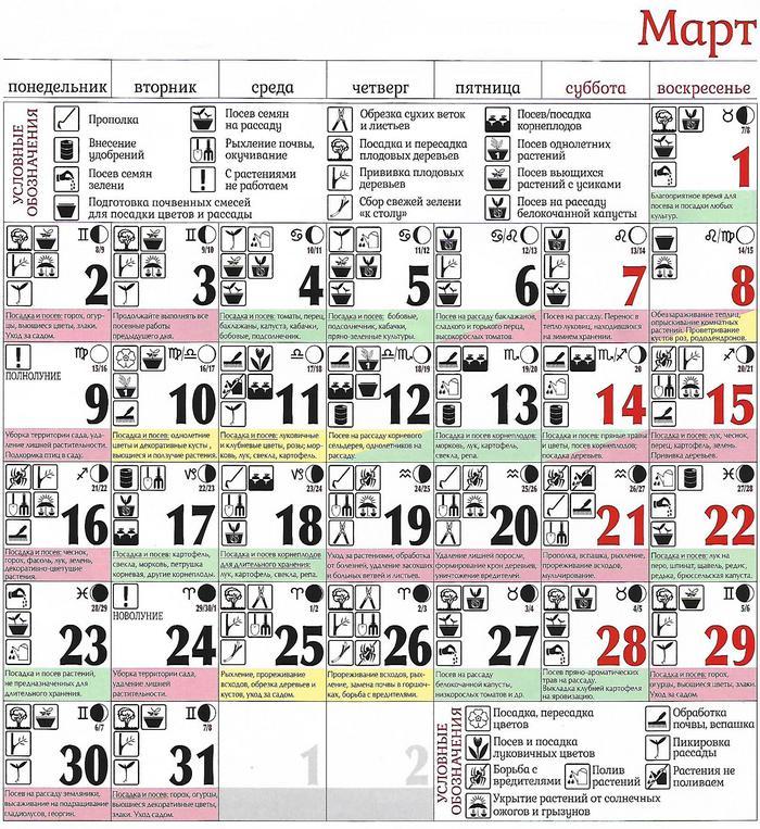 42824 Календарь огородника Март 2020