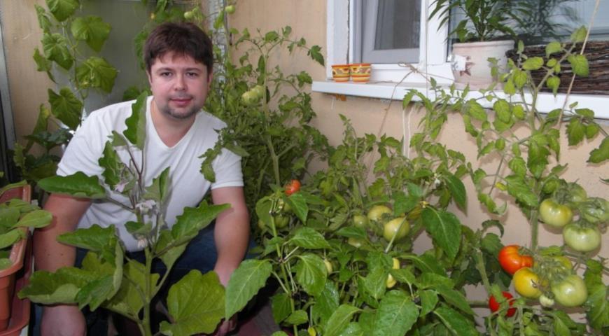 Михаил Кармишин, огород на балконе