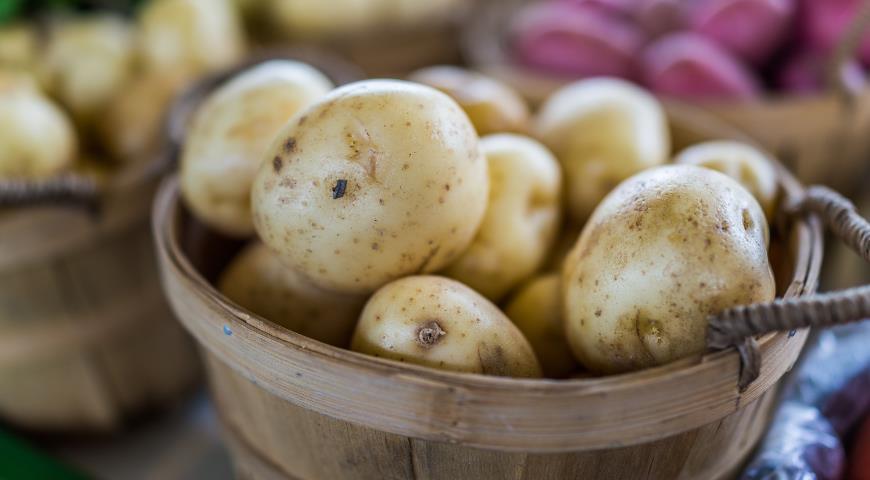 44386 Нужно ли проращивать картофель перед посадкой и другие важные вопросы про картошку