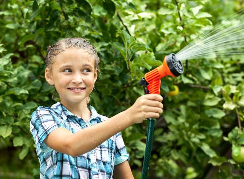 Правила полива плодовых деревьев от саженца до взрослого дерева