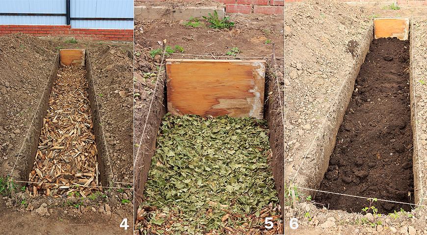 Ремонтантная малина: как получить богатый урожай ягод, личный опыт