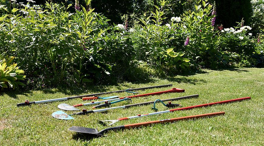 44910 Как сформировать идеальную кромку газона: советы Евгения Сапунова с фото и видео