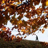 44857 Скандинавская ходьба – модный фитнес: в два раза эффективнее бега, работает 90% мышц