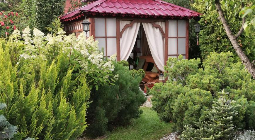 Павильон в китайском саду в окружении зелени