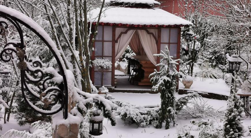 Зима в китайском саду