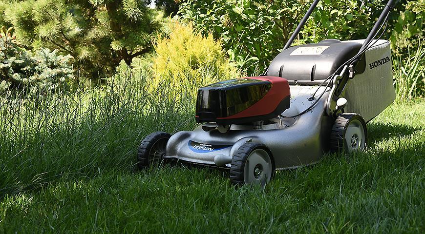 Секреты ухода за газоном: все о кошении аккумуляторной газонокосилкой HONDA