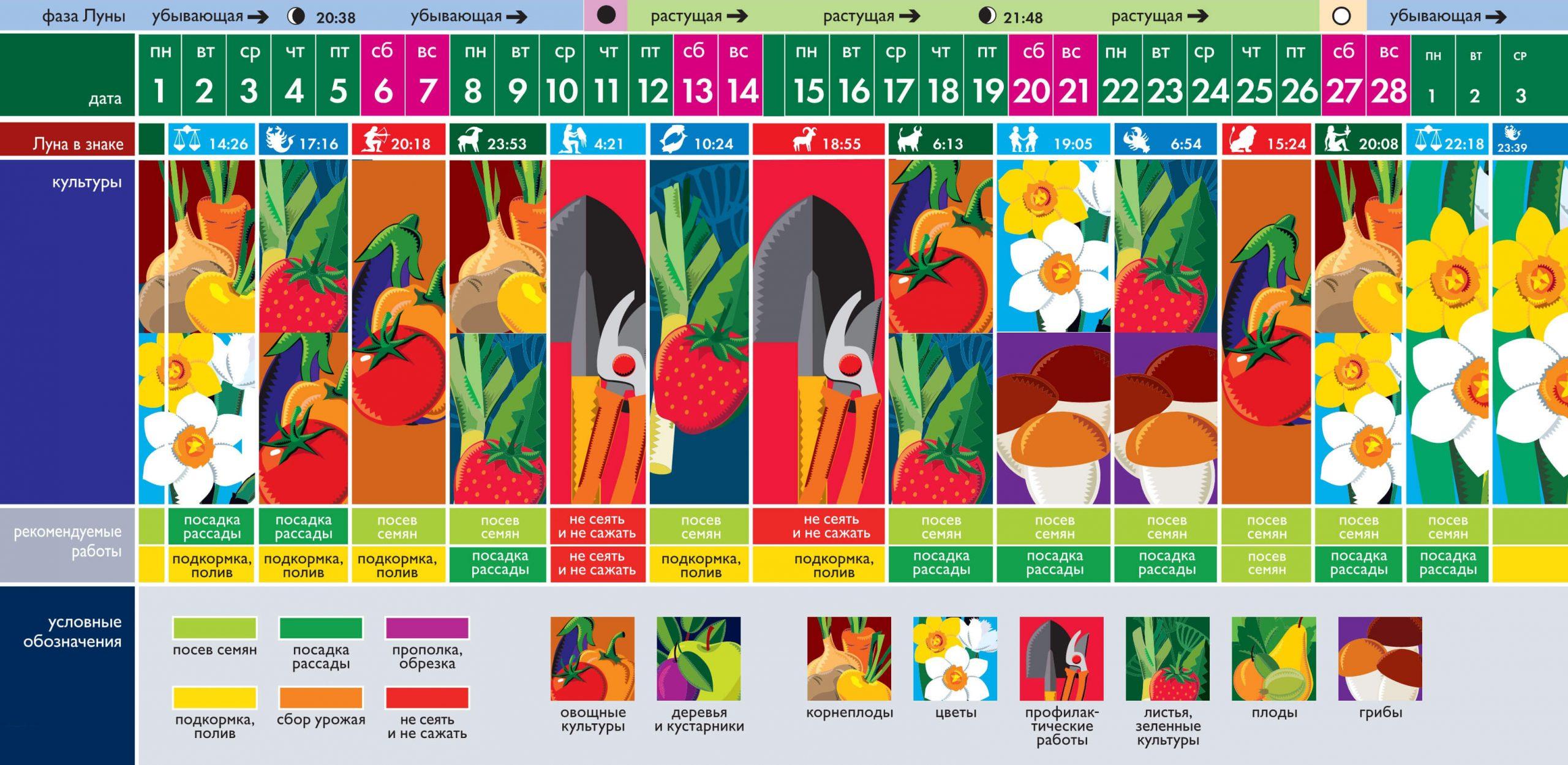 Лунный посевной календарь садовода огородника на сегодня 02-10-2021