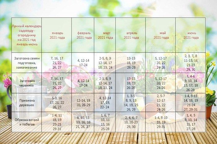 45268 Лунный посевной календарь садовода огородника на сегодня 11-09-2021