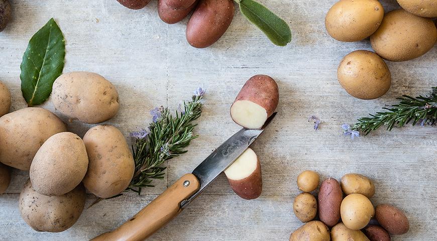 46566 Почему мелкая картошка самая ценная?