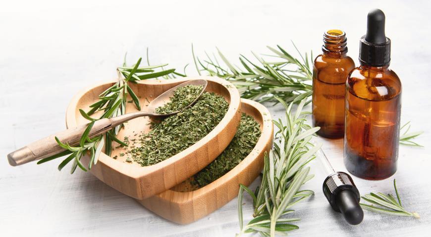 47244 Ароматный розмарин: полезные свойства и применение розмарина в медицине, кулинарии и косметологии + рецепты