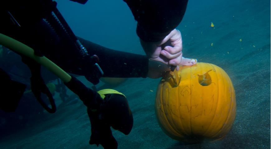 подводная резьба по тыкве