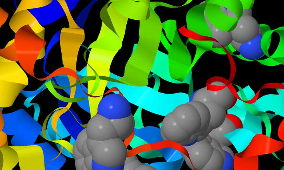 47009 Глубокое обучение поможет создавать белки с новыми функциями