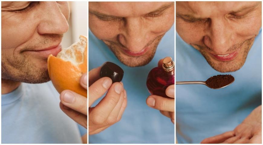 47238 Как снова научиться различать запахи и почему это очень важно