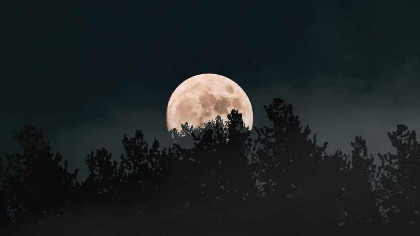 47037 Почему октябрьское полнолуние называют Луной Охотника и каким оно будет